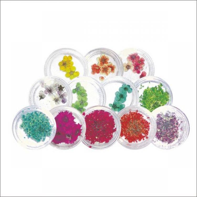 Сухоцветы в баночке для ногтевого дизайна